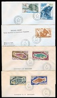 FRC - Antartida. 1974/9. TAAF / Dumont. 4 Excellent Franked Usages To France. Fishes / Ships. VF Group. One Is Reg. - France (former Colonies & Protectorates)