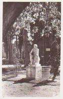 Cher        411        Saint Amand Montrond.Le Jardin De La Poste - Saint-Amand-Montrond