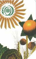 SCHEDA TELEFONICA  WORLD FOOD SUMMIT  SCADENZA 31/12/1998 USATA - Italia