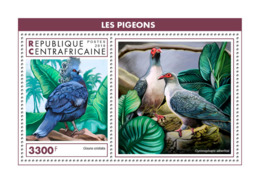 Central Africa 2018  Fauna  Pigeons  S201902 - Central African Republic