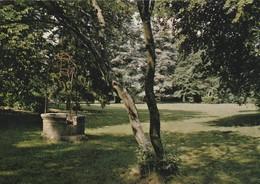 18- Aubigny Sur Nère - Les Grands Jardins - Aubigny Sur Nere