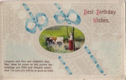AP41 Greetings - Best Birthday Wishes - Cows By Pond - Birthday