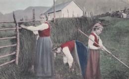 AN89 Social History Postcard - Lady And Children Farming - Paysans