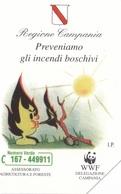 SCHEDA TELEFONICA  REGIONE CAMPANIA INCENDI  SCADENZA 31/12/1998 USATA - Italia