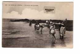Peche Pecheur Au Bord De L' Ocean Pecheurs De Crevettes Peche à Pied Crevette - Pêche