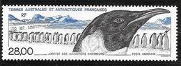 6 0113TAAF - PA  N°133 - Poste Aérienne