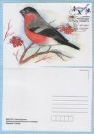 UKRAINE / Maxi Card / FDC / Ukrainian Compound. Winter. Fauna. Bird. Bullfinch.  2013. - Ukraine