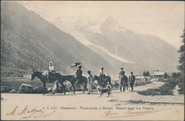 CHAMONIX - Promenade à Mulets . Départ Pour La Flégère - Chamonix-Mont-Blanc