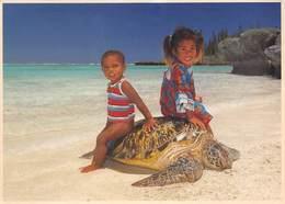 TORTUE - Gîte De Manamaky - Iles Des Pins - Nouvelle-Calédonie - Photo Ch. Poisson - Schildpadden