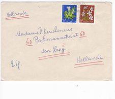 Svizzera Switzerland Suisse Helvetia 1960 Postal Cover Stamps Flora - Storia Postale