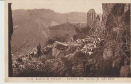 C.P.A. - ENVIRONS DE TOULON - EVENOS - SA VIEILLE EGLISE - 13182 - TROUPEAU DE MOUTONS AVEC BERGER  - A.D.I.A. - Toulon