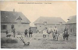 Cpa....Bergéres-la-Maingot....(Eure-et-Loir.)...une Ferme...(ferme Héreau)...animée ... Animaux..1906... - France