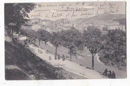 Carte Postale La Louvesc Et Le Boulevard - La Louvesc