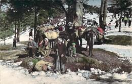 ALGERIE Scènes Et Types D'Afrique Du Nord Scène De La Vie Kabyle ânes Dans La Neige - Scènes & Types