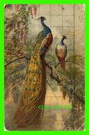 OISEAUX - COUPLE DE PAON - - Oiseaux