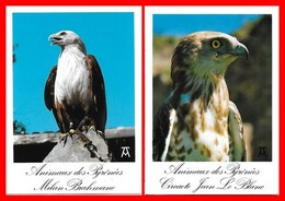 5 CPSM/gf Oiseaux. Milan Brahmane / Circaete Jean Le Blanc / Aigle Royal / Buse Variable / Condor Des Andes...I0878 - Vögel