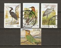 Zambie - Oiseaux - Petit Lot De 4° - Aigrette Vineuse - Guêpier De Böhm - Bec-en-sabot - Zambie (1965-...)