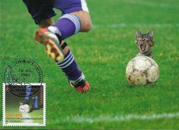 20.05.2008 - Ballon De Football - Cartes Maximum