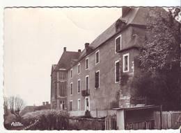 Cpm Cpsm St Sauveur  En Puisaye  Le Chateau - Saint Sauveur En Puisaye