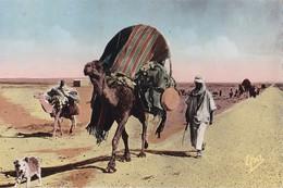 SCENES ET TYPES - Déménagement Dans Le Sahara - Scènes & Types