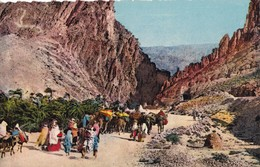SCENES ET TYPES - Les Gorges D'El Kantara - Scènes & Types