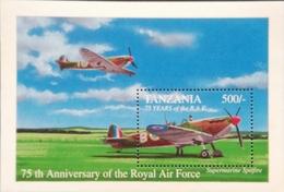 Tanzania   1993 Royal Air Force 75th. Anniv. S/S - Tanzania (1964-...)