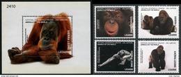 Sierra Leone 2017 National Geographic Fauna Monkeys Gorillas Set+s/s MNH - Gorilles