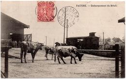 CPA Facture 33. Embarquement Du Bétail, 1906 - France