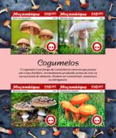Mozambique  2019 Mushrooms   S201902 - Mozambique