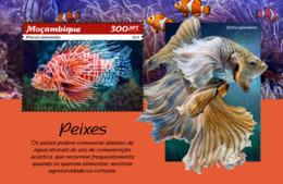 Mozambique  2019  Fauna  Fishes  S201902 - Mozambique