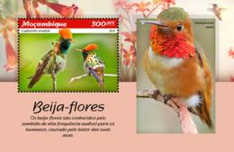 Mozambique  2019  Fauna   Hummingbirds  S201902 - Mozambique