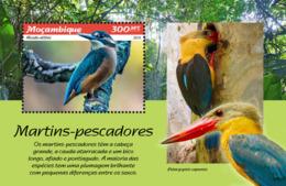 Mozambique  2019  Fauna Kingfishers Birds   S201902 - Mozambique