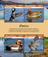 Mozambique  2019  Fauna  Ducks   S201902 - Mozambique
