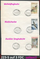 Mauretanien - Mauritanie - Michel 223-225 - Auf 3 Sehr Seltenen FDC / Trés Rare FDCs - Vögel Birds  Oiseaux Vogels - Mauritania (1960-...)