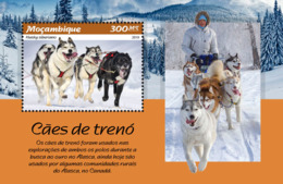 Mozambique  2019  Fauna  Sledge Dogs  S201902 - Mozambique
