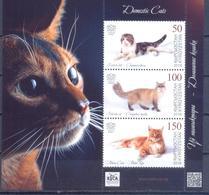 2019. Kyrgyzstan, Domestic Cats, S/s, Mint/** - Kirgisistan