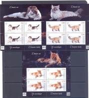 2019. Kyrgyzstan, Domestic Cats, 3 Sheetlets, Mint/** - Kirgisistan