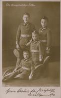 CARTE POSTALE ALLEMANDE - GUERRE 14-18 - DIE KRONPRINZLICHEN SÖHNE - Guerre 1914-18