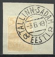 Estland Estonia 1919 Michel 5 O TALLINN-SADAM Nice Cancel - Estonie