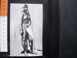 CP Carte Postale Postcard Plastifiee SCENES ET TYPES Nu MAURESQUE DU SUD - Afrique Du Nord (Maghreb)