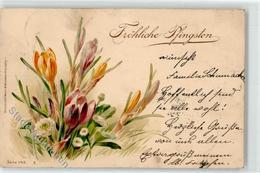 52467047 - Blumen Wezel & Naumann - Pentecôte