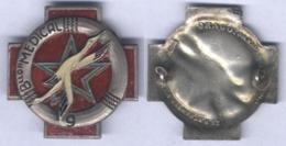 Insigne Du 9e Bataillon Médical - Insigne Peint - - Medicina