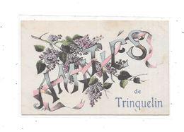 89 - Amitiés De TRINQUELIN - France