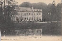 Postkaart/Carte Postale WOMMELGEM Château D'Hulgenrode 1909 (C210) - Wommelgem