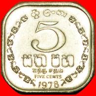 # GREAT BRITAIN (1978-1991): SRI LANKA ★ 5 CENTS 1978 MINT LUSTER! LOW START ★ NO RESERVE! - Sri Lanka