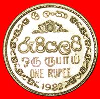 # GREAT BRITAIN (1972-1994): SRI LANKA ★ 1 RUPEE 1982 MINT LUSTER! LOW START ★ NO RESERVE! - Sri Lanka