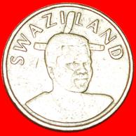 # 2 PORTRAITS (1995-2009): SWAZILAND ★ 1 LANGENI 2003! LOW START ★ NO RESERVE! - Swaziland