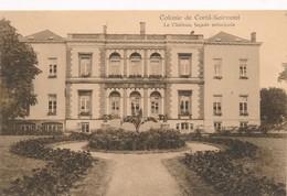 CPA - Belgique - Colonie De Cortil-Noirmont - Le Château - Chastre