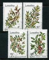 Lesotho 1979 Trees Set Used (SG 367-370) - Lesotho (1966-...)