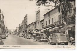 66 LE PERTHUS  Los Limitès  Avenida De Barcelona - Other Municipalities